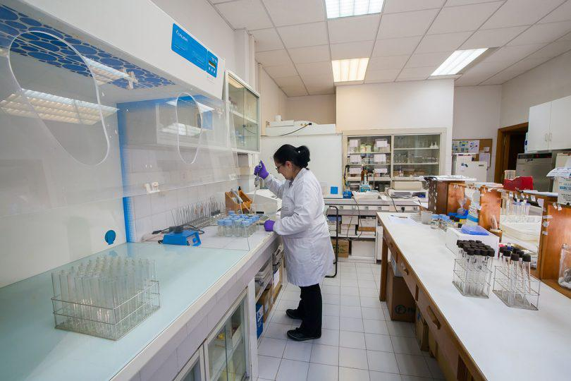 Microbiology and nutrient cycle laboratory