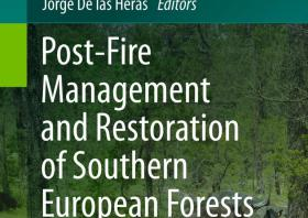 POST-FIRE FOREST MANAGEMENT IN SOUTHERN EUROPE