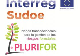 PLURIFOR PROJECT