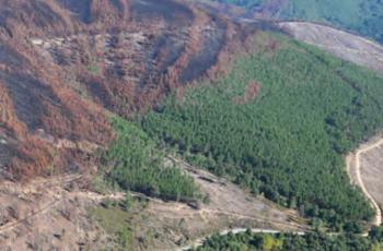 PRELIMINARY EVALUATION OF THE EROSIVE RISK FOLLOWING THE FOREST FIRE