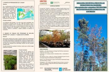 """GENETIC IMPROVEMENT AGAINST THE WOOD (Bursaphelenchus xylophilus) NEMATODE IN LOURIZÁN FORESTRY RESEARCH CENTRE"" TRIPTYCH"