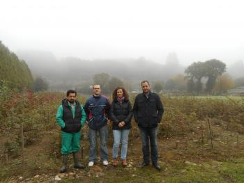 FOLLOW-UP OF THE IMPROVEMENT PROJECT OF THE GALICIAN OAK