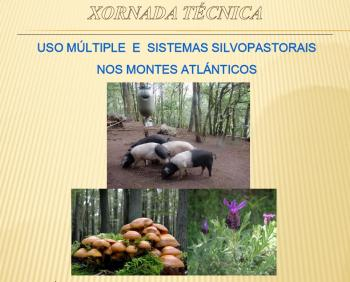 "TECHNICAL CONFERENCE ""MULTIPLE USE AND SILVOPASTORAL SYSTEMS IN THE ATLANTIC MOUNTAINS"""