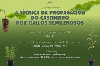 "TECHNICAL CONFERENCE ""PROPAGATION TECHNIQUE OF THE CHESTNUT TREE BY SEMI-HARDWOOD CUTTINGS"""